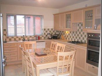Large double attic room - Rushden - £380 pcm