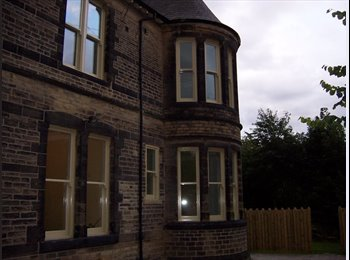 EasyRoommate UK - Luxury apartment for professionals to share - Broomhill, Sheffield - £450