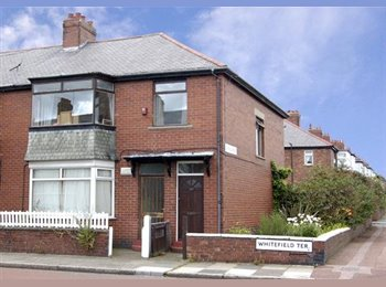 EasyRoommate UK - Heaton flat - Heaton, Newcastle upon Tyne - £380