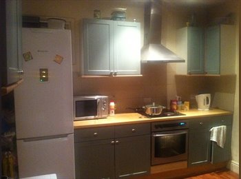EasyRoommate UK - Great House with Larage Rooms. - Bedford, Bedford - £368