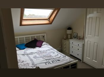 EasyRoommate UK - great  convenient place to live in Chester - Chester, Chester - £380