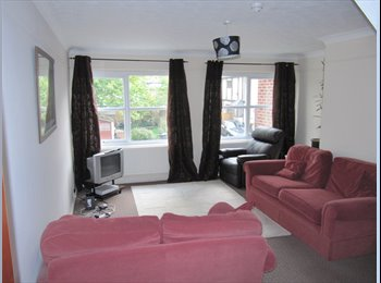 EasyRoommate UK - chelmsford - new house share 5 mins Chelms station - Chelmsford, Chelmsford - £520