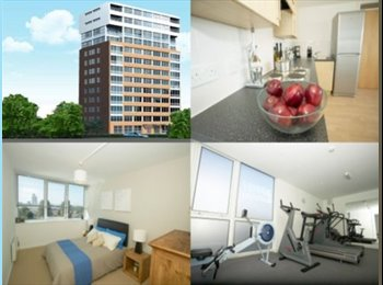 Double rm available in secure apt, wifi + parking