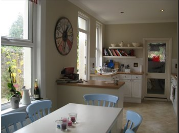 EasyRoommate UK - Large bedroom in friendly houseshare, Mannamead - Mutley, Plymouth - £400