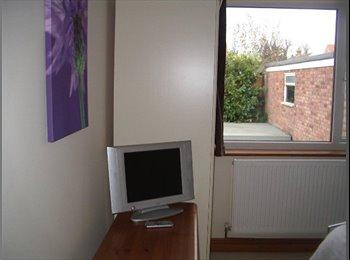 EasyRoommate UK - Double room to rent in Dersingham,Norfolk - Dersingham, Kings Lynn - £350