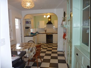 House to share, room to let