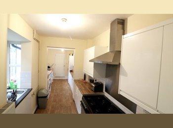 Edgbaston- professional. House share
