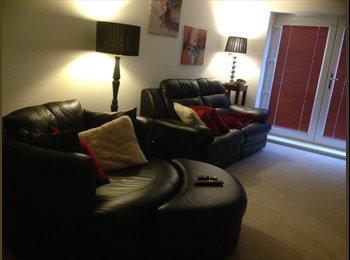 EasyRoommate UK - Room available in Aylesbury new build - Aylesbury, Aylesbury - £420