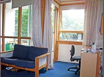 Huge sunny room with own balcony in creative flat