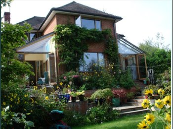 EasyRoommate UK - Professional single wanted for large 4 bed detache - Crowthorne, Crowthorne - £550