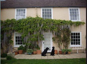 Comfortable village house