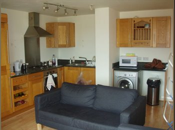 2 bed flat -Ideal for Final year students at Trent