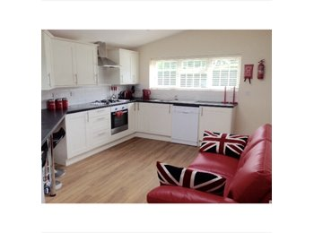 EasyRoommate UK - FRIENDLY PROFESSIONAL  HOUSESHARE MAIDSTONE - Maidstone, Maidstone - £600