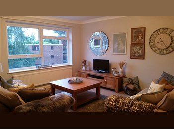 EasyRoommate UK - Double room to rent on London Rd, Stoneygate - Stoneygate, Leicester - £350