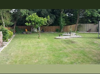 EasyRoommate UK - Double furnished room close to QEH & Springwood High. - King's Lynn, Kings Lynn - £360