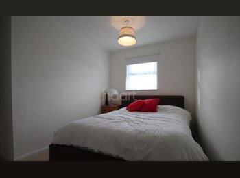 Double Room in big house for rent.