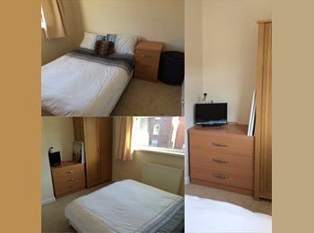 EasyRoommate UK - Friendly Double Bedroom Fully Furnished Available - Exeter, Exeter - £390
