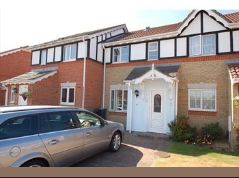 EasyRoommate UK - double room in a nice clean tidy home - Gosport, Fareham and Gosport - £400