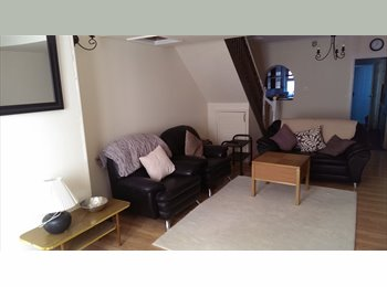 Choice of 2 Rooms to let, in a newly refurbished h
