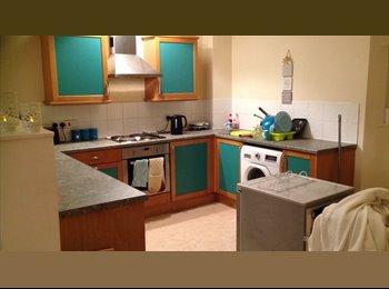 EasyRoommate UK - fun friendly females - Liverpool Centre, Liverpool - £275