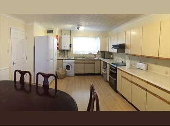 EasyRoommate UK - Double Room To Let in Fully Furnished House - Bill - Peterborough, Peterborough - £90