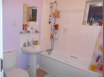 EasyRoommate UK - A Newly decorated double bedroom - Basingstoke, Basingstoke and Deane - £450
