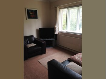 EasyRoommate UK - Double Room, City Centre, Sky with Sports in Room - Chelmsford, Chelmsford - £550