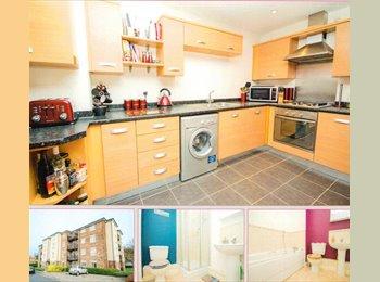 EasyRoommate UK - Beautiful 2 bed & 2 bathroom flat. - Tovil, Maidstone - £750