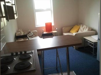 EasyRoommate UK - Flat in the City Centre - Bath, Bath and NE Somerset - £360