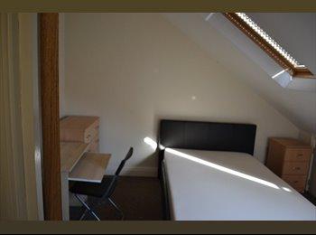EasyRoommate UK - 2 BEDROOMS AVAILABLE NEAR CARDIFF UNIVERSITY - Roath, Cardiff - £325