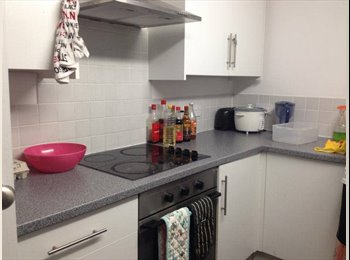 EasyRoommate UK - BATH BA2 One STUDENT Bedroom Available-4-5months - Twerton, Bath and NE Somerset - £300