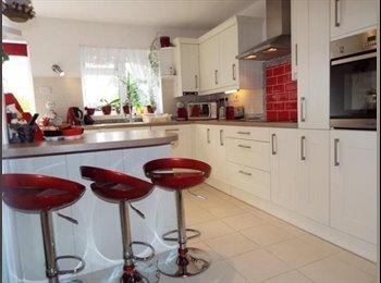 EasyRoommate UK - Large Double room Basildon - Basildon, Basildon - £580