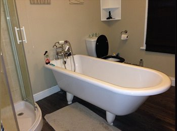 EasyRoommate UK - I want to stay in current property, buddy up? - Wolverton, Milton Keynes - £450