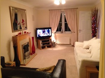 EasyRoommate UK - Two double rooms - Woodston, Peterborough - £360