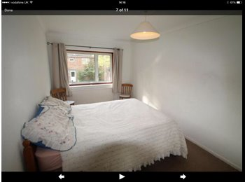 EasyRoommate UK - Room to rent - Basingstoke, Basingstoke and Deane - £400