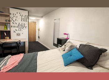 EasyRoommate UK - Room in Private Student Halls, available now! - Newcastle City Centre, Newcastle upon Tyne - £500