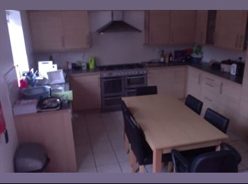 EasyRoommate UK - Housemate Needed September 2015 - Hatfield, Hatfield - £440