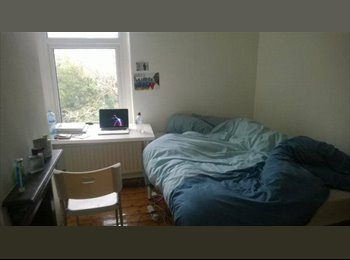 EasyRoommate UK - 2 room still available - Cathays, Cardiff - £230