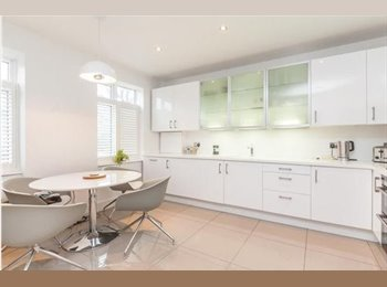 Modern, Friendly Tooting House