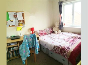 EasyRoommate UK - Double and Single room to rent - Norwich, Norwich and South Norfolk - £250