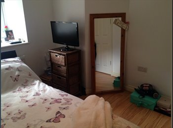 EasyRoommate UK - SPEND SUMMER BY THE SEA IN TORQUAY - Torquay, Torquay - £300