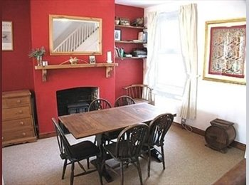 EasyRoommate UK - 1 roomate needed!! - Exeter, Exeter - £350