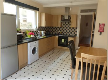 EasyRoommate UK - Double room in great house Beaumont rd st Judes - St Judes, Plymouth - £350