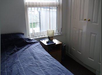 EasyRoommate UK - Cheap room in Cardiff Adamsdown - Roath, Cardiff - £230