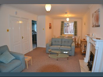 EasyRoommate UK - Bright, Modern Room near Chester City Centre - Upton, Chester - £500