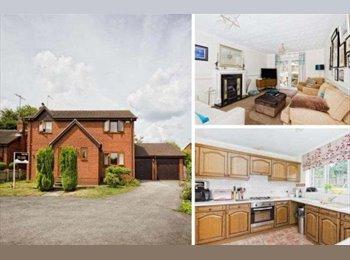 EasyRoommate UK - lovely new home - Leeds, Leeds - £320