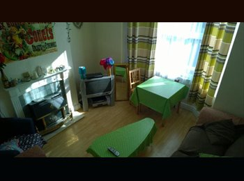 Furnished room available for professionals