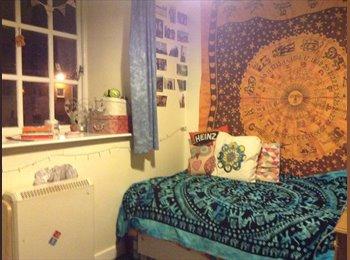 EasyRoommate UK - £75 EN-SUITE STUDENT ROOM - Preston, Preston - £75