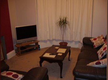 EasyRoommate UK - Furnished large double bedroom available - St Thomas, Exeter - £430