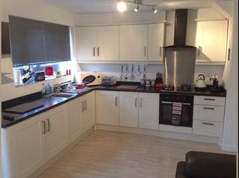 EasyRoommate UK - Double room in area - Stockton Heath, Warrington - £320